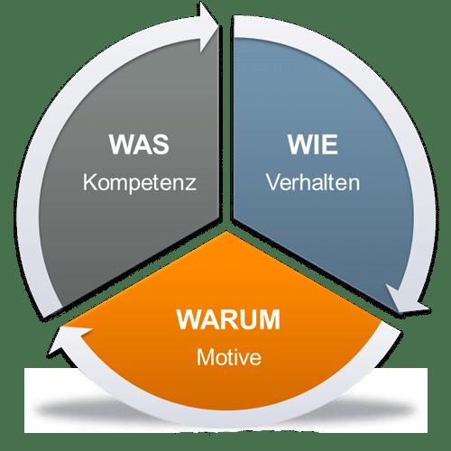Erklärung INSIGHTS MDI® - Potentialanalyse mit Markus Euler